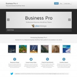 Professional Responsive Business WordPress Theme
