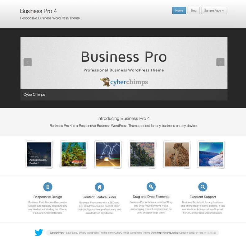 Forex pro wordpress theme