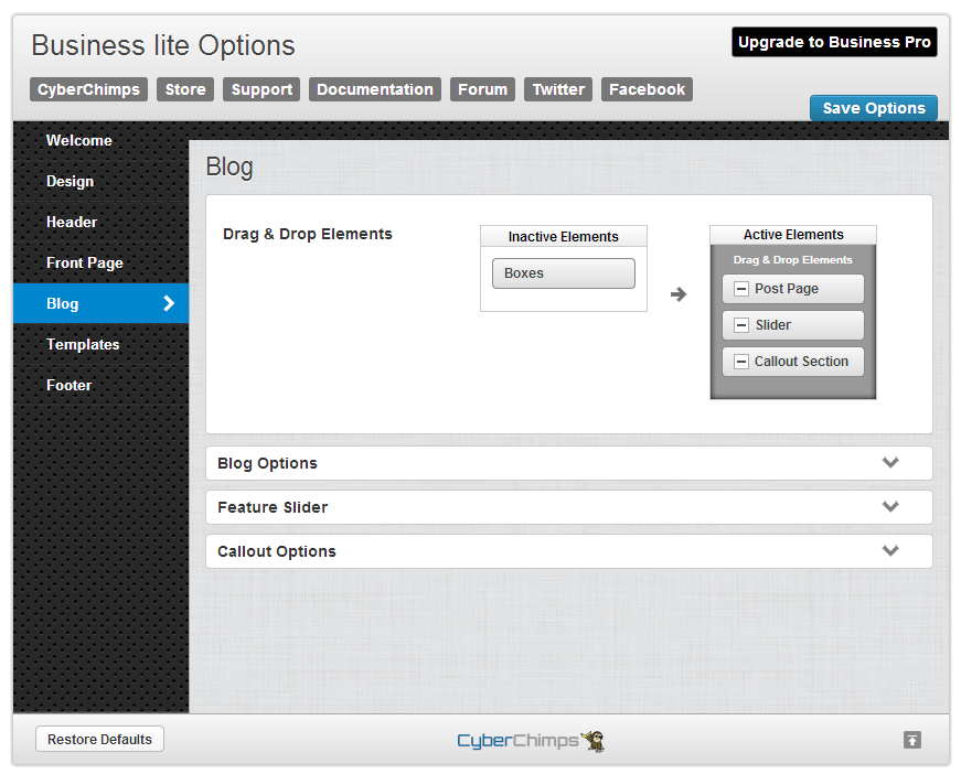 Business lite Blog Options