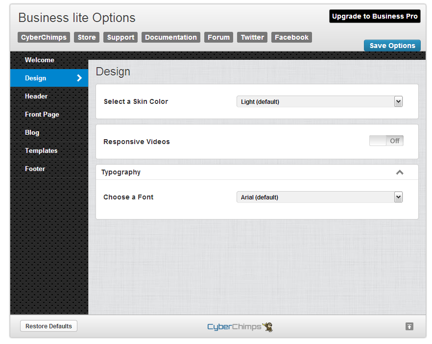 Business lite Design Options