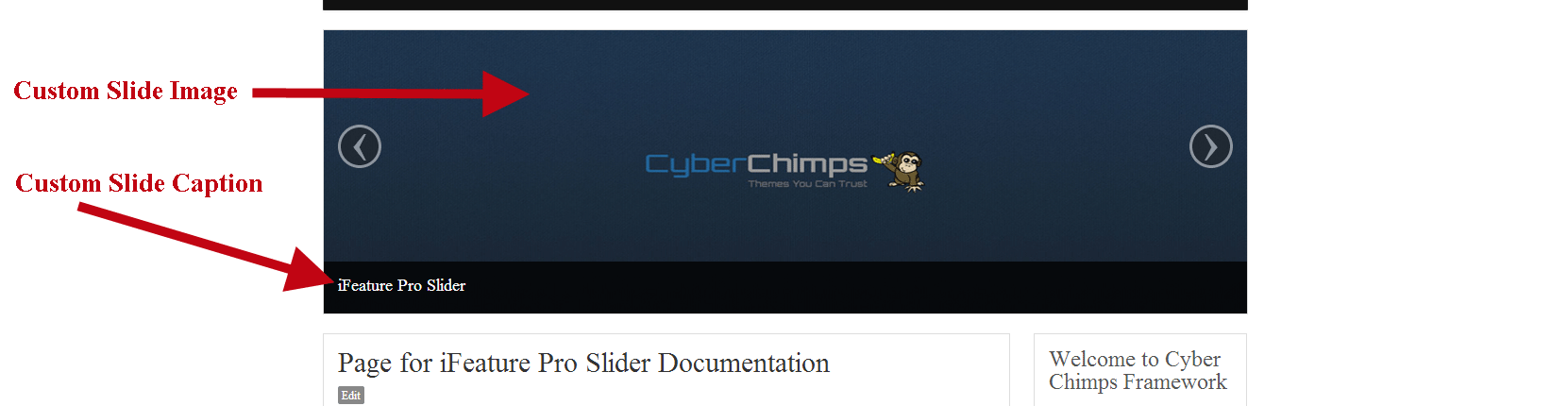Custom Slide Image and caption