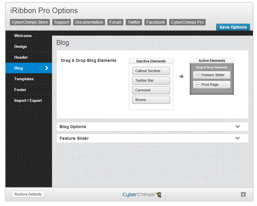 iRibbon Pro Blog Options