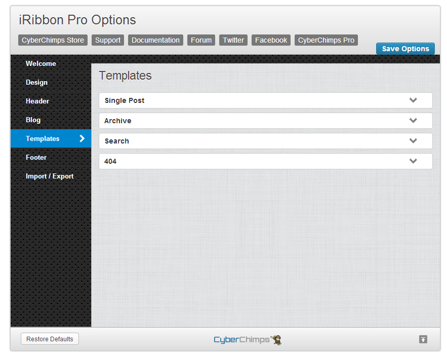iRibbon Pro Template Options