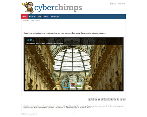 CyberChimps Responsive Pro WordPress Theme