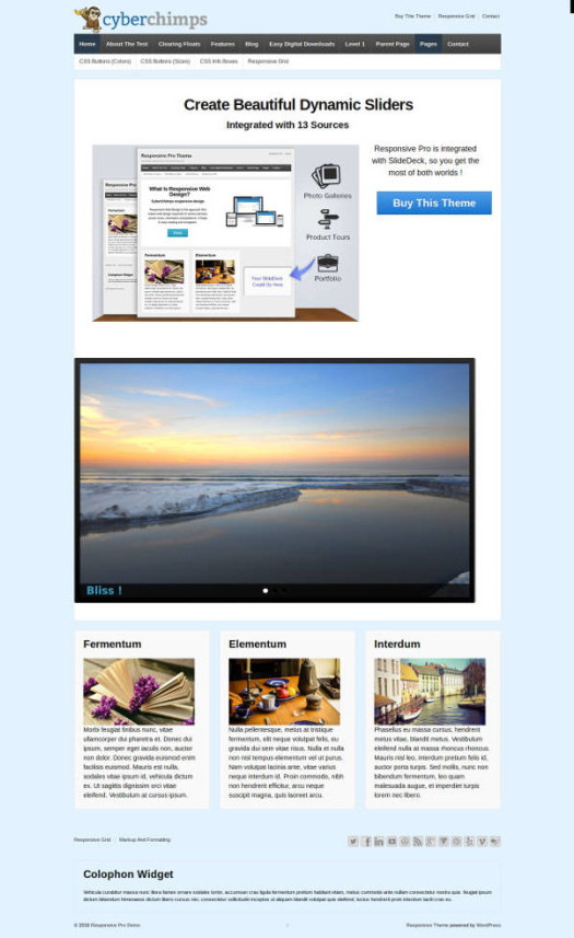 ResponsivePro CyberChimps Responsive WordPress Theme
