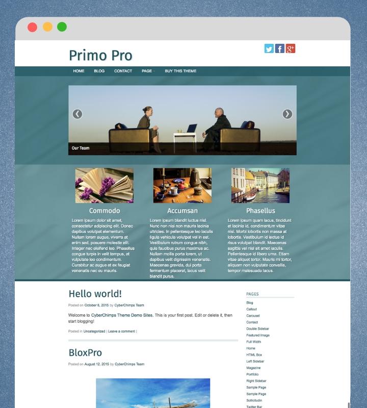 Primo Pro WP Theme