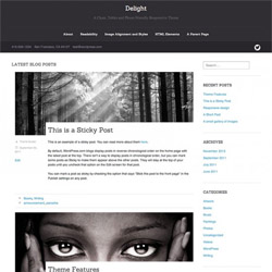 elegant responsive WordPress theme