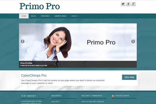 Premium Business WordPress Theme