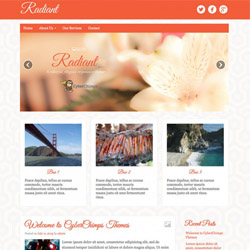 WordPress Theme Radiant Pro