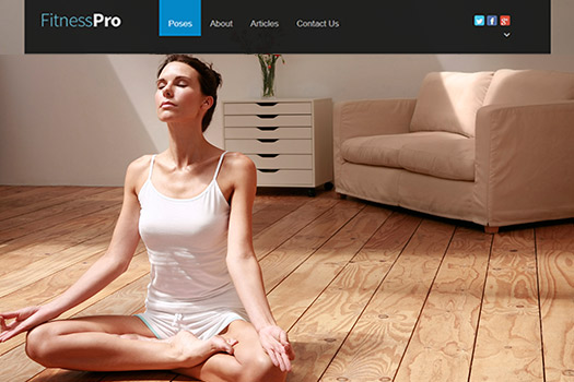 Health Fitness WordPress Theme