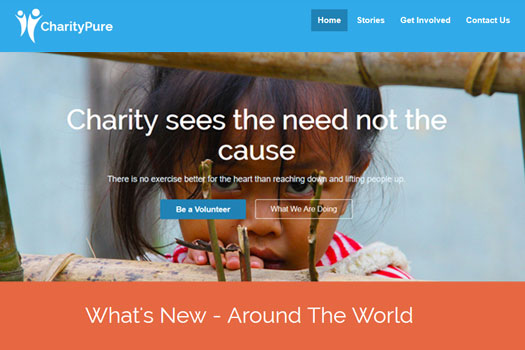 charity_pure