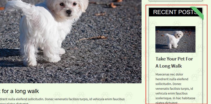 Recent Post Widget in WordPress theme
