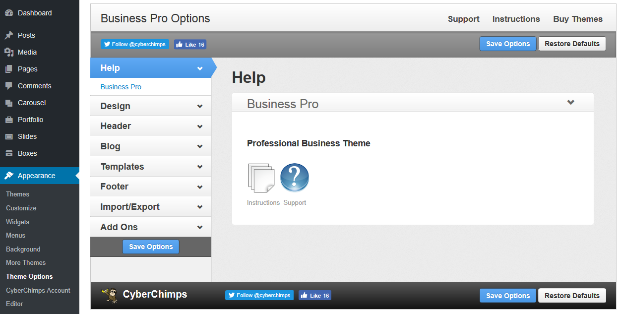 Business Pro - Theme Options