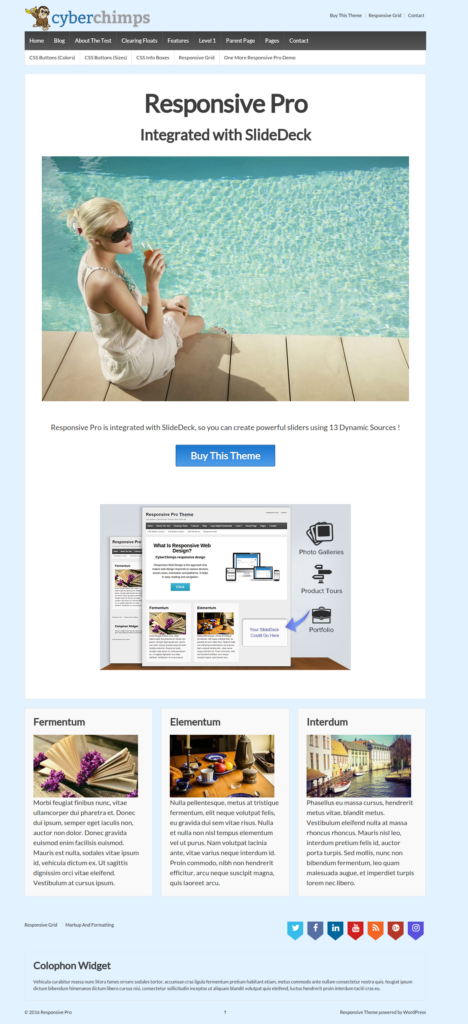 Homepage Front-end - Responsive Website