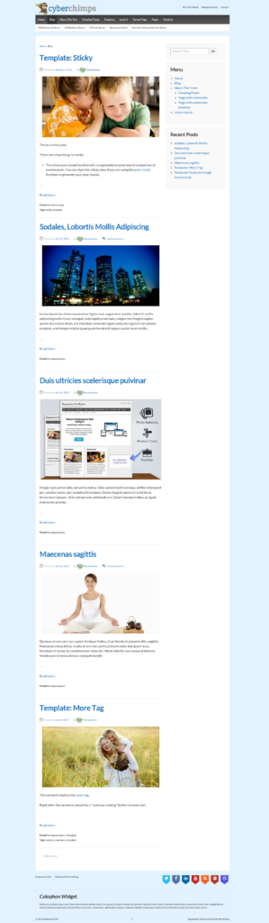 Blog Post Page Front-end - Responsive Website