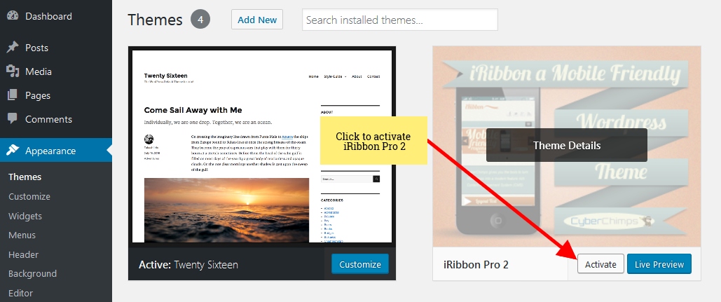 iRibbon Pro 2 - Activate