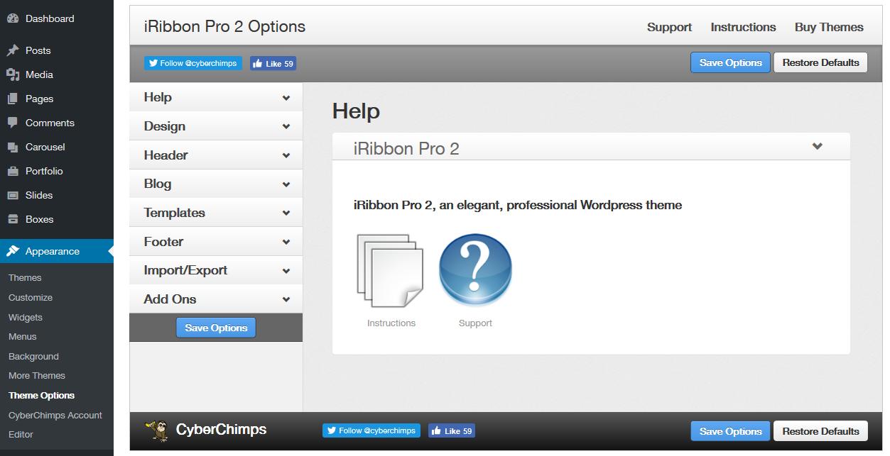 iRibbon Pro 2 - Theme Options