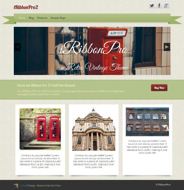 iRibbon Pro 2 - CyberChimps vintage WordPress theme