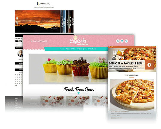 Premium Word Press Themes