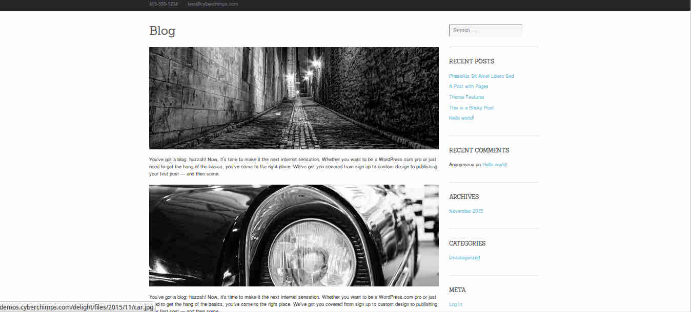 Blog Settings for WordPress Blogging Theme