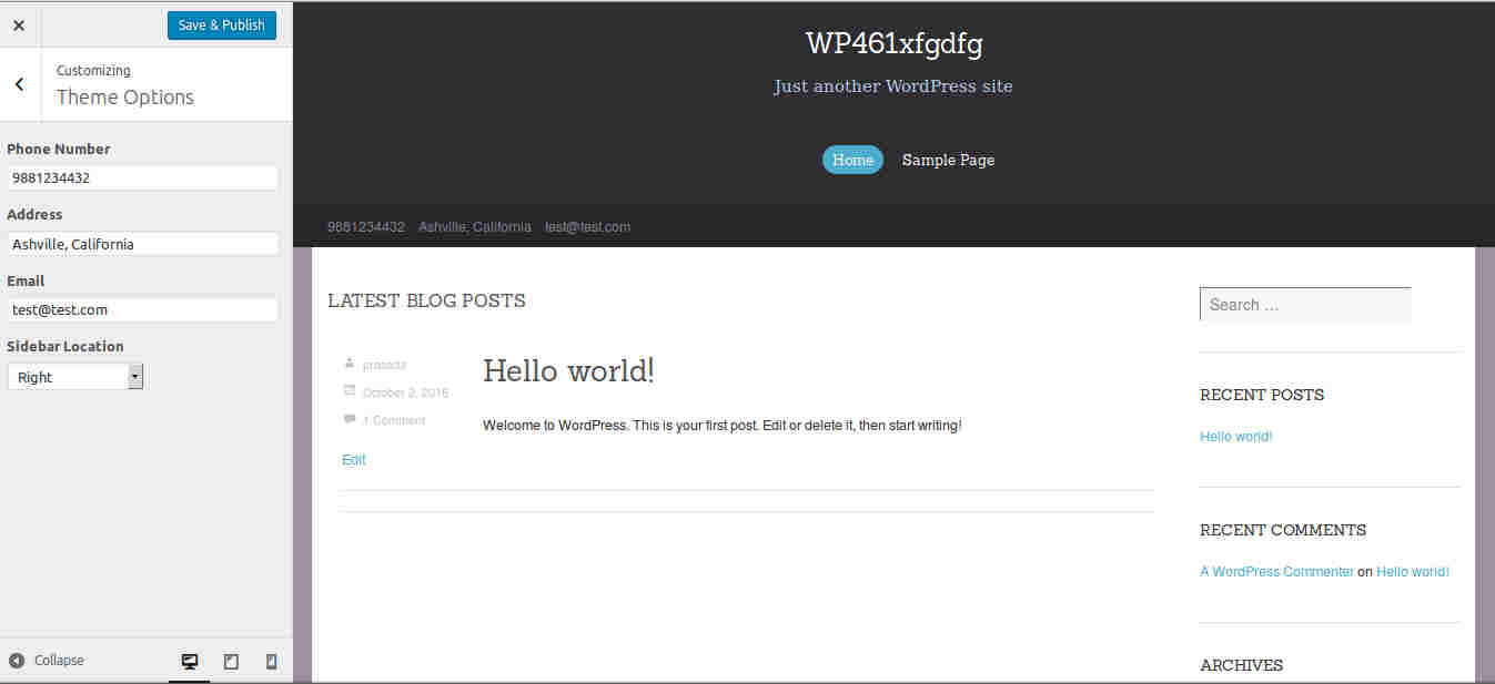 Contact information options in WP Themes