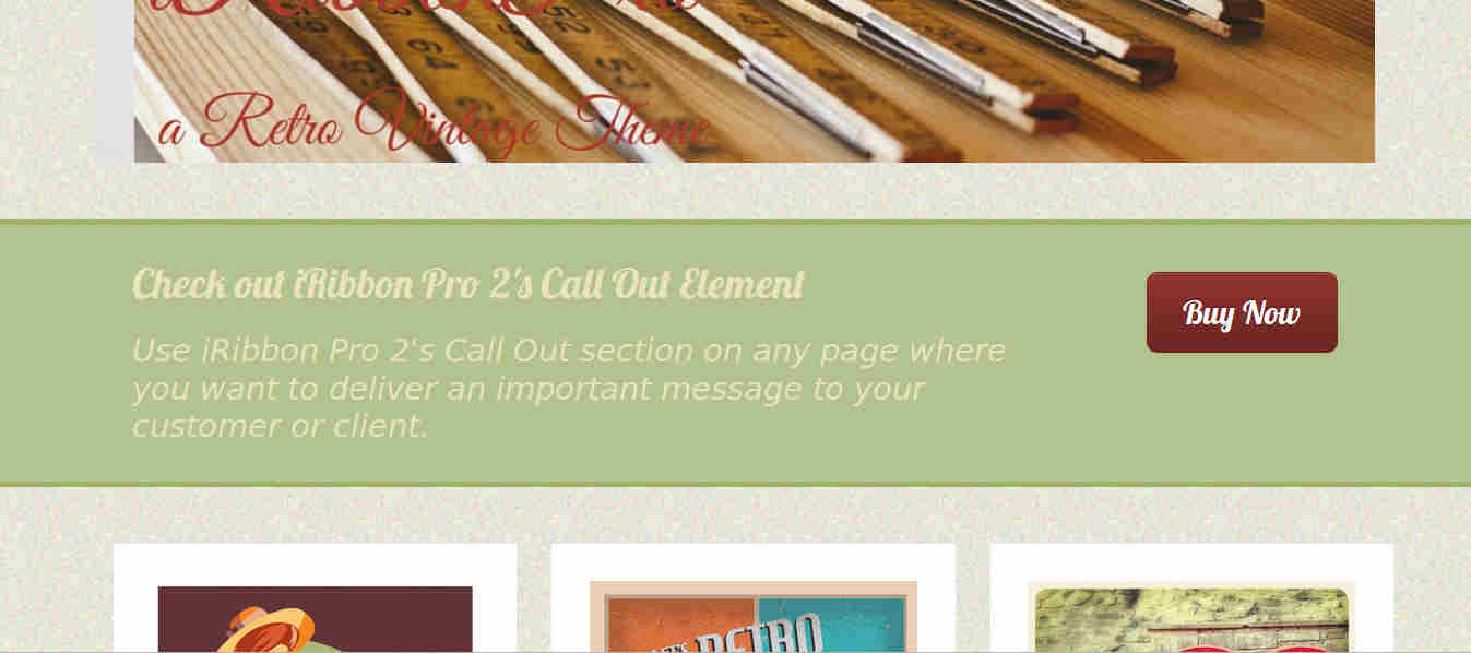 Call to action button in WordPress theme