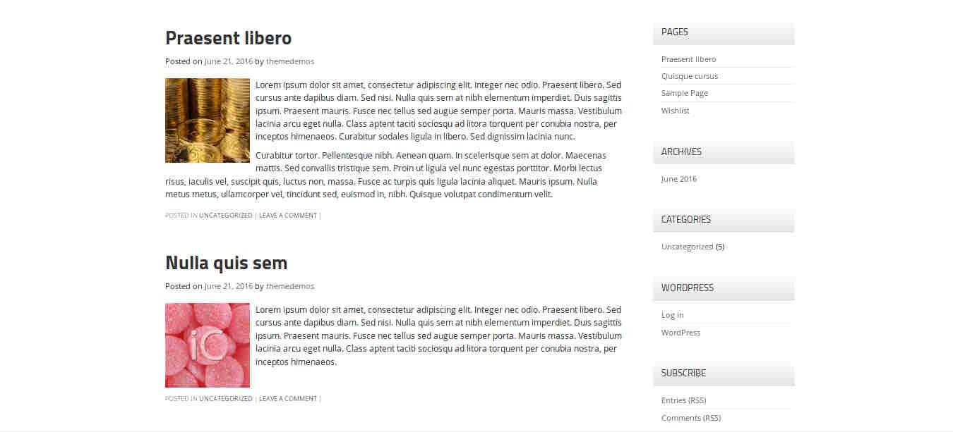Blog Template for WordPress Magazine Theme