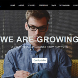 One single Page WordPress Theme