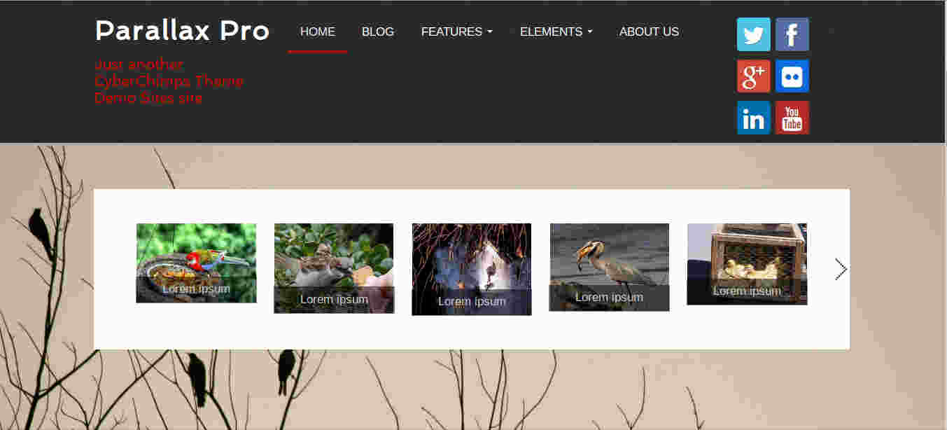Carousel element in Parallax WordPress theme