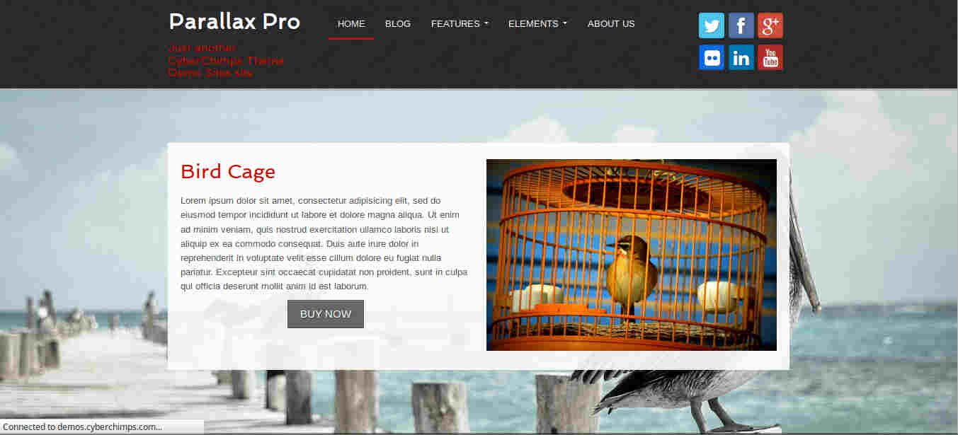 Product Element in Parallax WordPress themes