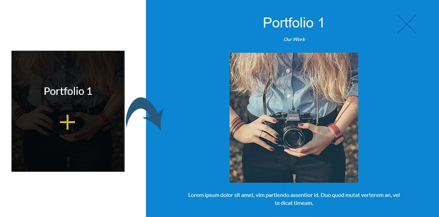 portfolio in one page WP theme
