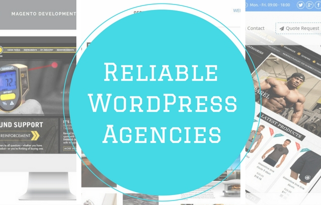 Looking for a reliable WordPress Agency