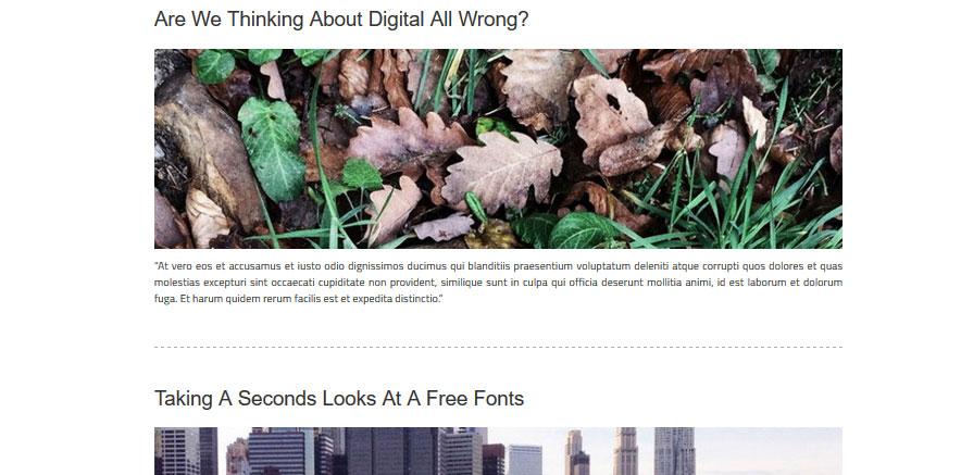 Blog Settings for WordPress theme