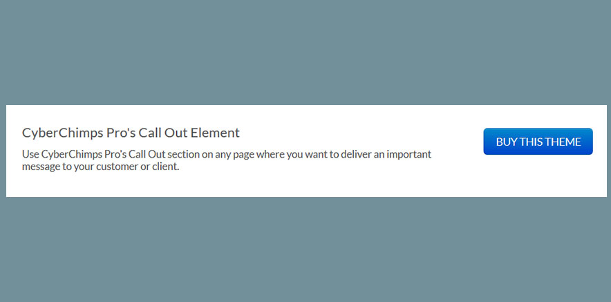 Call out section in Corporate WordPress theme