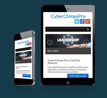 CyberChimps Pro WordPress theme