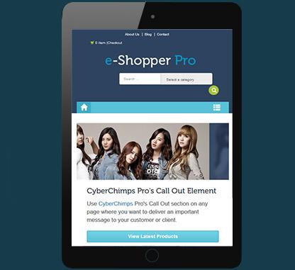 E commerce WordPress Theme