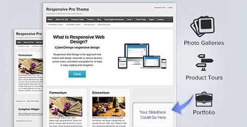Upgrade From Free Responsive Theme