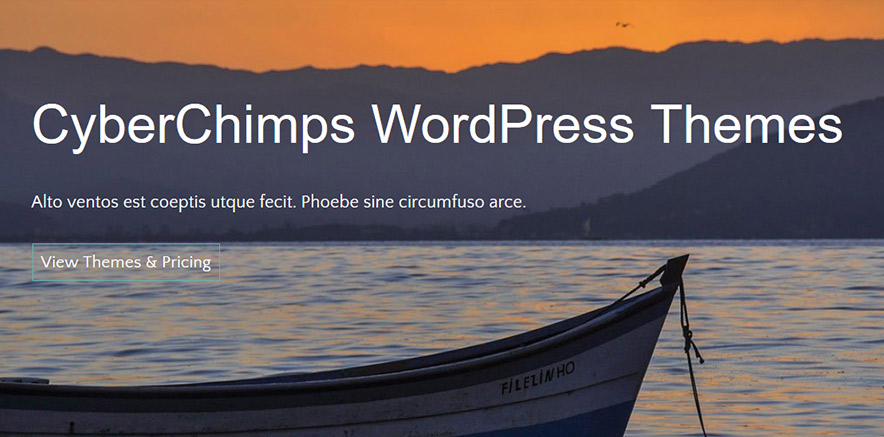 Background image in WordPress Travel Theme