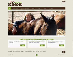 Responsive Free Theme Example Websites