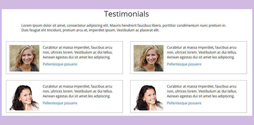 Testimonial Element in Real Estate WordPress Theme