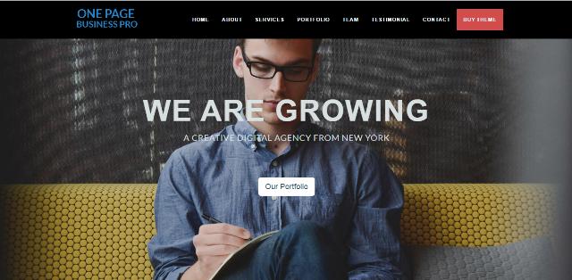 One Page Business Pro WordPress theme