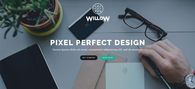 Willow WordPress Theme