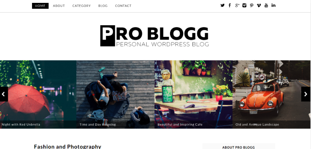 Pro Blogg WP Theme