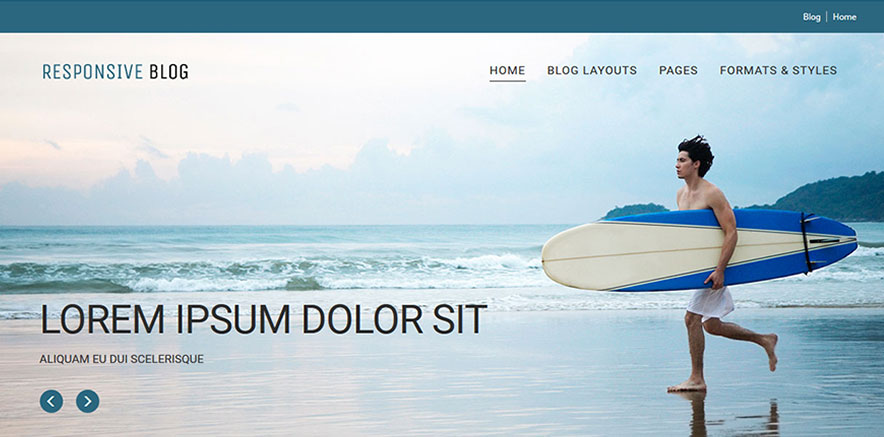WordPress Theme with Slider