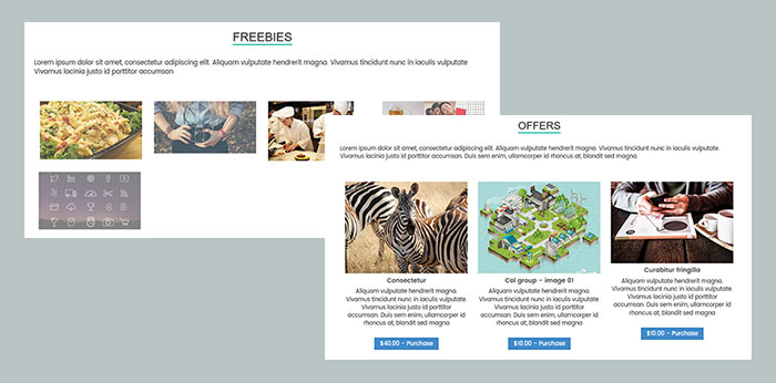 Digital products in WP theme