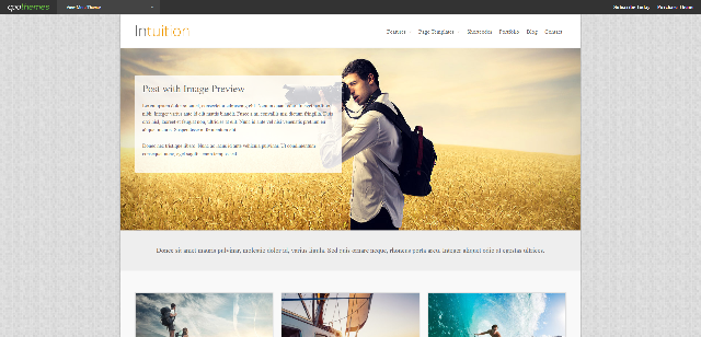 Intution WP theme