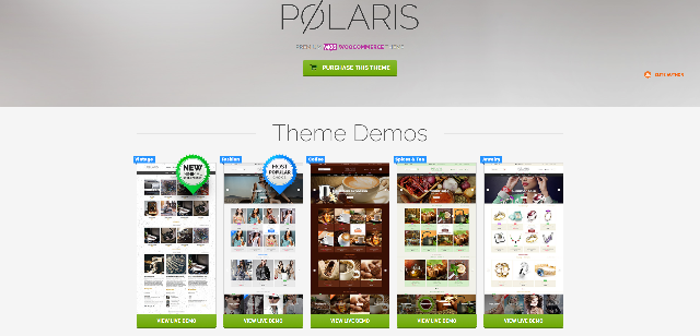 Polaris - eCommerce WP theme for fashion store