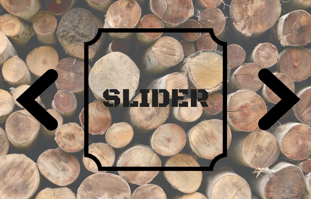 Best WordPress Themes with Slider