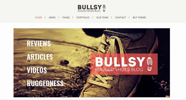 bullsy