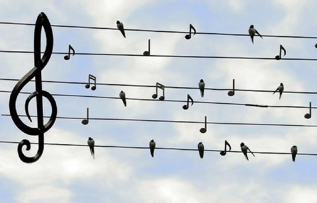 Free And Premium Music WordPress Themes